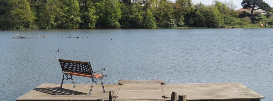 Vue sur le lac de Rochereau depuis les gîtes